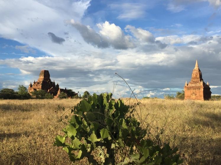 Bagan 18-110
