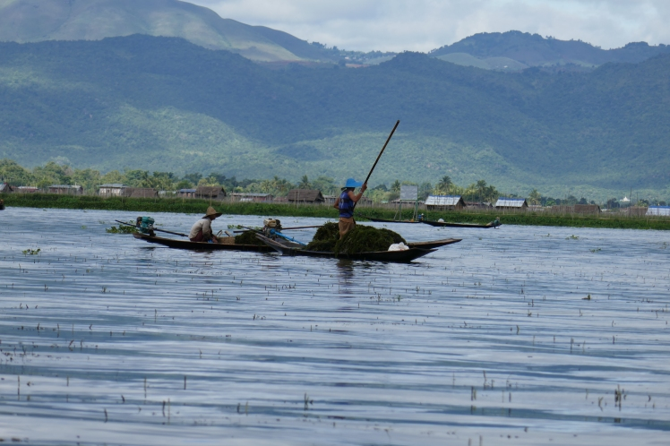 Inle 23-12