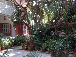 Agra 14 fev-07